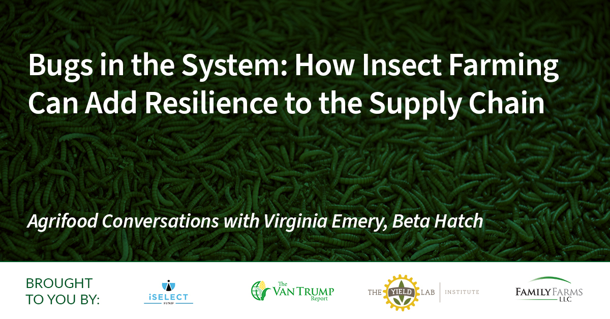 Agrifood Conversations: Bugs in the System: How Insect Farming Can Add Resilience to the Supply Chain